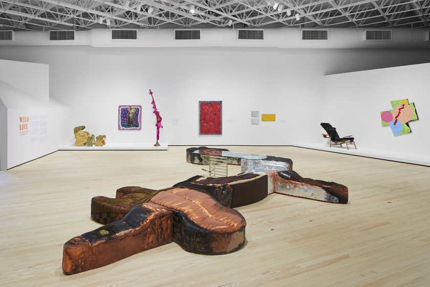 Installation view, Wild Life: Elizabeth Murray and Jessi Reaves, Contemporary Arts Museum Houston, Texas, January 21 -May 16, 2021
